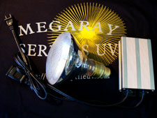 Mega-Ray EB 60 watt Flood UVB Lamp Kit